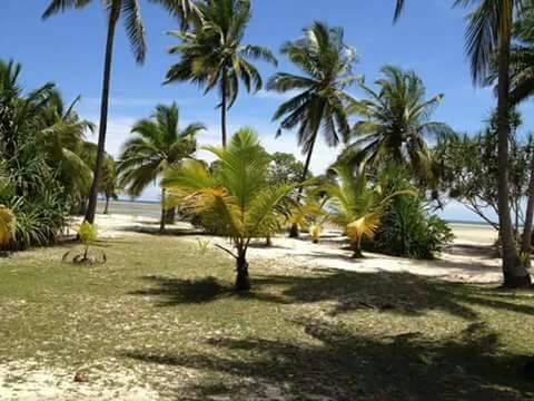 BEACH PLOT FOR SALE AT TANGA PANGANI