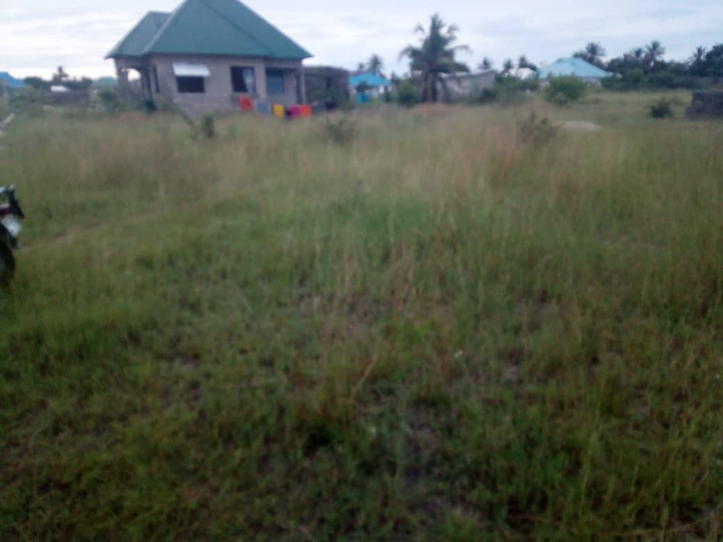 PLOT FOR SALE AT CHANIKA