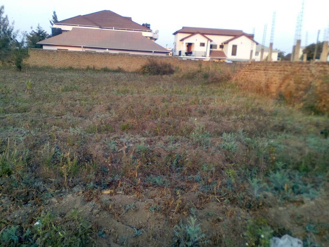 SURVEYED PLOT FOR SALE AT MBEYA NEW FOREST