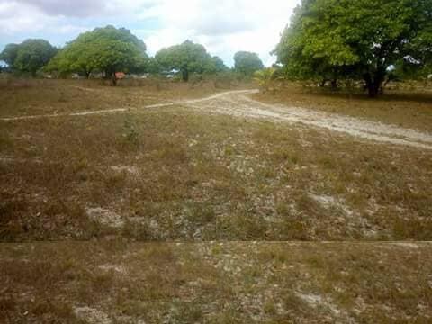 FARM FOR SALE AT MKURANGA