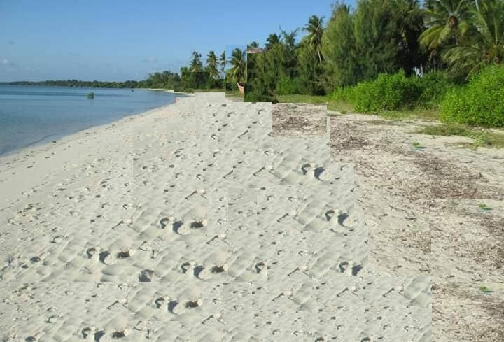 Mafia Beach