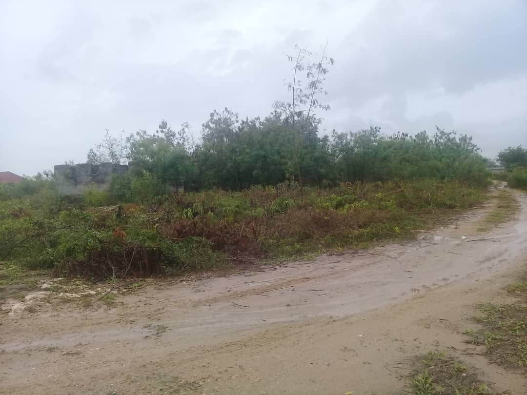 Bamba Beach Plot For Sale