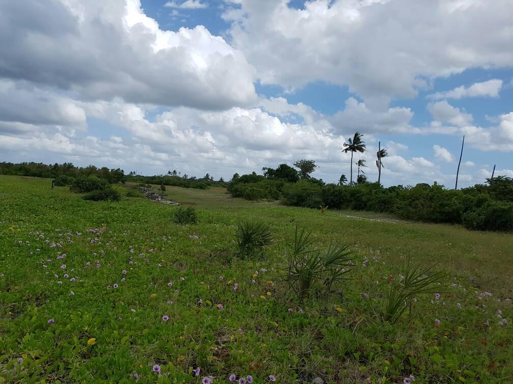 Prime Beach For Sale At Mtwara Town Tanzania Real Estate